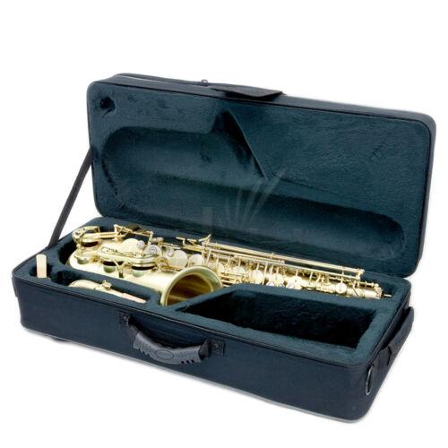 "Ten reeds 10 *HOLIDAY SPECIAL* /""Sky/"" Alto Saxophone w Versatile Case"