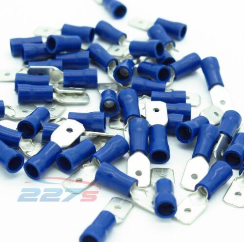 6.3mm 100x Azul Aislado Terminales de Horquilla Crimp Conector Eléctrico Macho