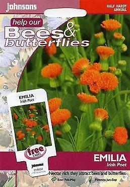 Patio Plants Home & Garden 200 Seeds Flower Johnsons Seeds ...
