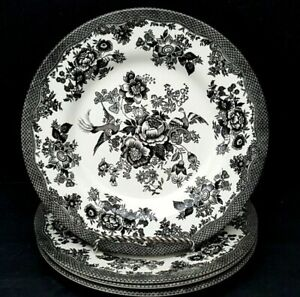 Royal-Stafford-Asiatic-Pheasant-Black-dinner-Plates-Set-of-4