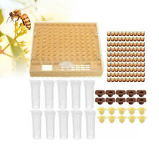 Cell Cups Complete Bee Queen Rearing System Cultivating Cage Beekeeping Box Kit