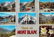 BT14137 la Tour du Mont Blanc dog chien car voiture          France