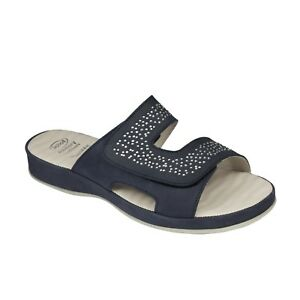 Sandals Scholl Sandals Sandals Clotilde Sandals Clotilde Scholl Scholl Clotilde Scholl Z0gwXg