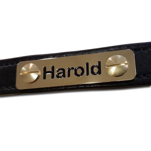 Aluminium Halfter Namensschild Reitsport Stift Etikette 8 Größe Optionen