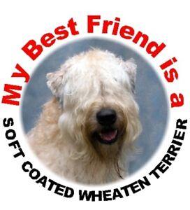 BULLDOG Show Off Dog Car Sticker By Starprint