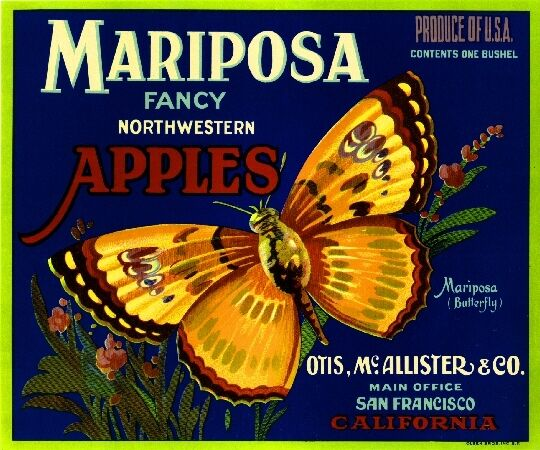 San Francisco California Mariposa Butterfly Apple Fruit Crate Label Art Print