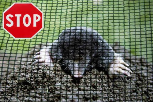Mole Net Protective Moleslip Mesh Repellent with Ground Anchor 3mx50m 50 EA