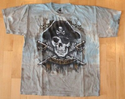 Disney Parks Boys Gray Pirate of the Caribbean Hanes T-Shirt Size Small w//Anchor