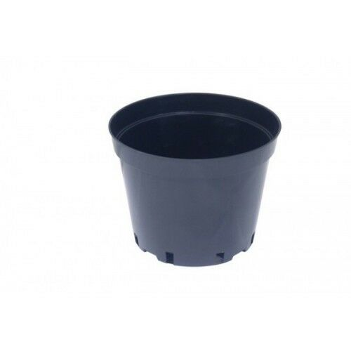 cheap plastic small pots flower pot 1 litre plant pot round plants black