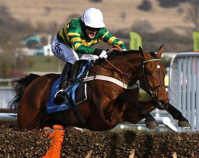 BINOCULAR RIDDEN BY TONY McCOY 01 PHOTO PRINT