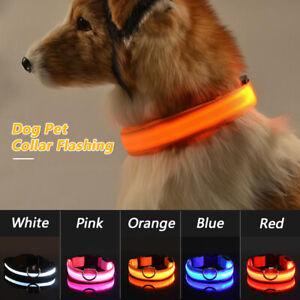 Collier-en-Nylon-Lumineux-rechargeable-Reglable-Chien-Chat-Pet-Cat-Chiot-LED-USB