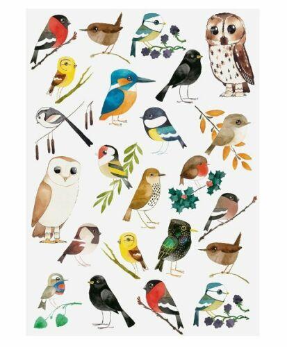 Matt Sewell toalla de té aves silvestres herrerillo Jilguero Starling
