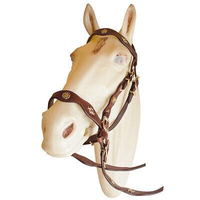 Spanish Portuguese Baroque Leather Horse Bridle by Marjoman, cob Size | eBay