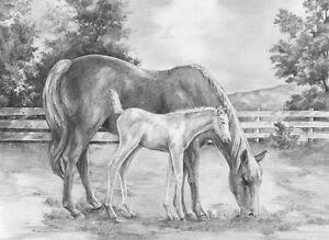 Sketching Skizzieren Malen Mit Bleistift Pferde 30 Cm X 40 Cm
