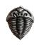 縮圖 1 - Trilobite Pewter Pin Badge