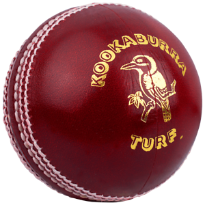 Kookaburra Paceball Cricket Ball Mens Youth Size New