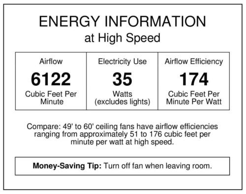 Aerialist 52-Inch Two-Blade Indoor DC Motor Ceiling Fan Westinghouse 7201600