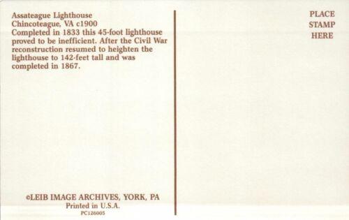 - Postcard VA Eastern Shore Assateague Lighthouse Chincoteague Virginia c1900