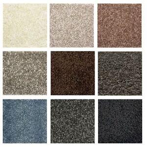 Image Is Loading Modern Carpet Tresor New Polypropylen Colours Size Rug