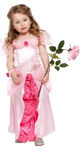 Toddler Girls Fancy Dress Up Costumes Party Outfit World Book Day Kids Age 3 New
