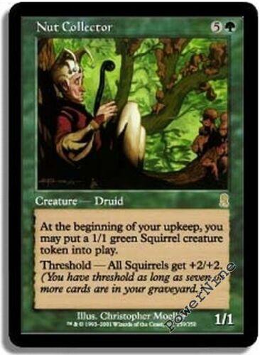 4 PLAYED Nut Collector Green Odyssey Mtg Magic Rare 4x x4