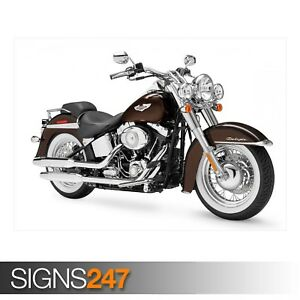 HARLEY-DAVIDSON-FLSTN-SOFTAIL-AE179-Photo-Picture-Poster-Print-Art-A0-to-A4