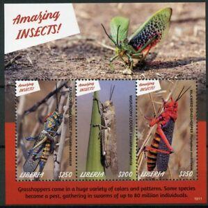 Liberia 2019 Neuf Sans Charnière Fabuleux Insectes Criquets Sauterelles 3 V M/s Timbres-afficher Le Titre D'origine