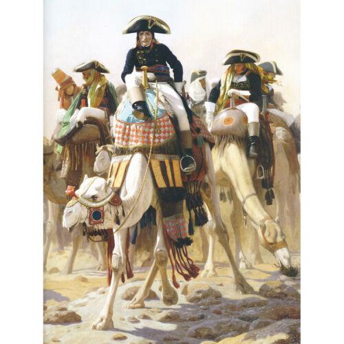 Gerome Napoleon Bonaparte Camel Egypt Painting Art Print Framed 12x16