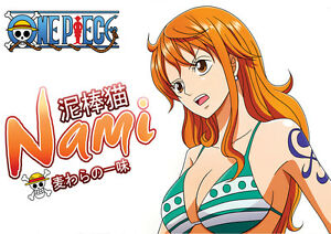 One piece - nami naked images 10