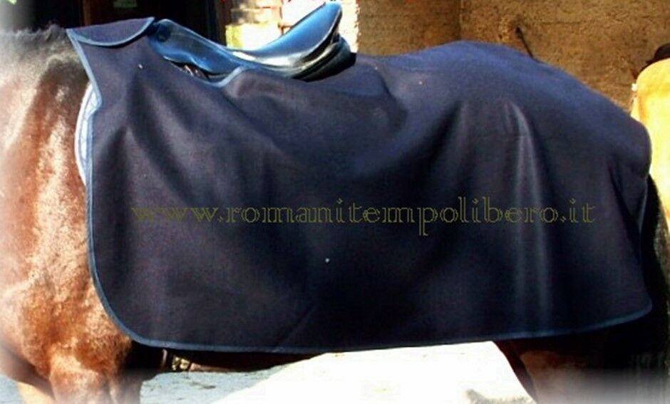 Blanket scaldareni for Horses WOOL-Warm kidneys coverot in Woolen horse