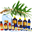 3ml-Essential-Oils-Many-Different-Oils-To-Choose-From-Buy-3-Get-1-Free thumbnail 15