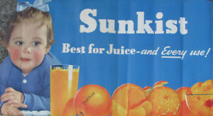 1940s-SUNKIST-ORANGES-STORE-BABY-DISPLAY-POSTER-20x40-034-California-Fruit-VINTAGE