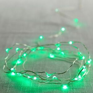 Pier 1 Imports Fairy Lights Green Flexible Led Glimmer