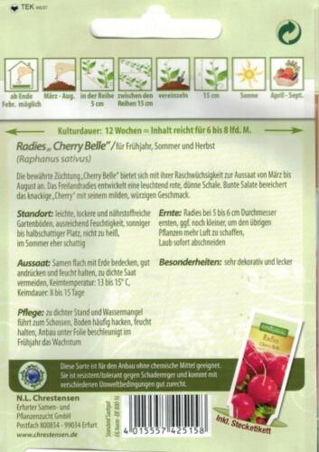 4078 Chrestensen Radies /'Cherry Belle/' für  Frühjahr Sommer Herbst Anbau Samen