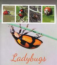 Gambia 2014 MNH Ladybugs 4v M/S II Insects Ladybirds Beetles Asian Lady Beetle