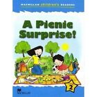 Macmillan Children's Readers: A Picnic Surprise: Level 2 by Amanda Cant (Paperback, 2007)