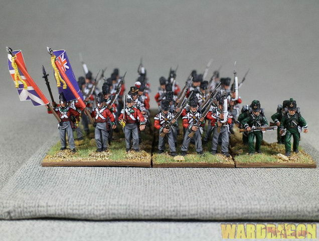 28mm Napoleonic WDS painted British Infantry v84