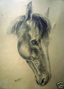 Roger-Quicray-Dessin-au-crayon-sur-papier-signe-le-cheval-equitation