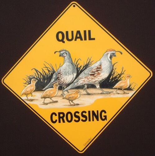 QUAIL CROSSING Sign 16 1//2 by 16 1//2 NEW decor  birds signs  novelty painting