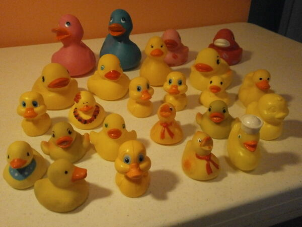 Rubber Ducks Lot of 24 [142833108748] $4.99 - Fireshearts.top