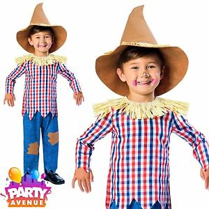 Image is loading World-Book-Day-Boys-Scarecrow-Costume-Fairytale-Fancy-  sc 1 st  eBay & World Book Day Boys Scarecrow Costume Fairytale Fancy Dress Kids ...