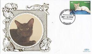 80869-Lesotho-Benham-FDC-Cats-18-May-1988