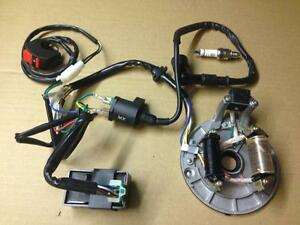 new wiring loom harness cdi stator plate electrics spark plug pit rh ebay co uk Pit Bike Parts Pit Bike Light Kit