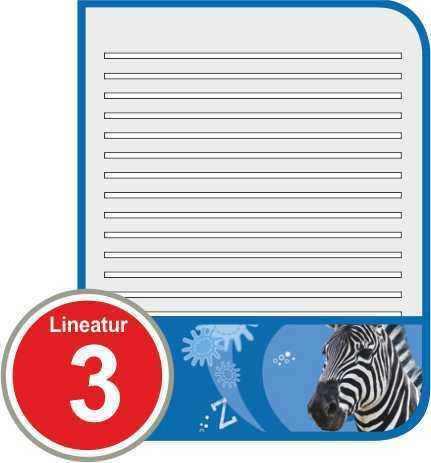 10er Pack Schulhefte DIN A5 verschiedene Liniaturen