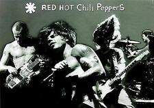 """RED HOT CHILI PEPPERS POSTER """"LIVE"""""""