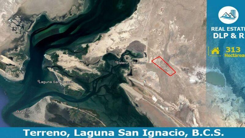 Terreno en venta en Laguna de San Ignacio