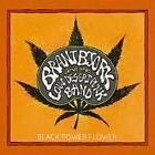 Black Power Flower (Ltd.First Edt.) von Brant And The Low Desert Punk Band Bjork (2014)