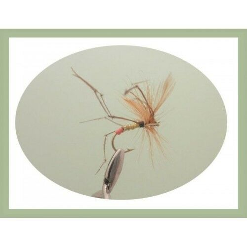 6 Pack Orange Tipped Daddy Long Legs Trout Fly Mixed 10//12 Fishing Flies