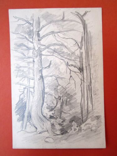 """Forest Interior"" drawing by Eugene Higgins"