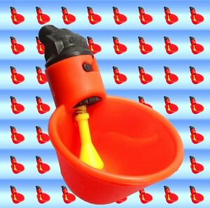 6-Pack-Poultry-Water-Drinking-Cups-Chicken-Hen-Plastic-Automatic-Drinker-New